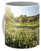 Landscape With Daisies Coffee Mug