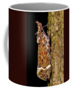 Lantern Fly Coffee Mug
