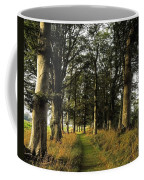 Larchill Arcadian Garden, County Coffee Mug