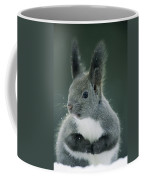 Large Tufted Ears Grace An Coffee Mug