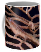 Large Whip Goby And Pygmy Seahorse Coffee Mug