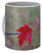 Last Leaves Coffee Mug