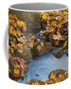 Last Signs Of Autumn 0438 Coffee Mug