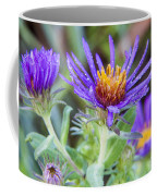 late Summer Fleabane Coffee Mug