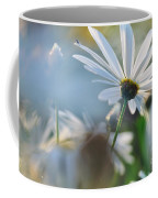 Late Sunshine On Daisies Coffee Mug