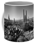 Late Winter Desert Coffee Mug by Chad Dutson