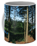 Lauragh, Co Kerry, Ireland Trees In A Coffee Mug