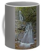 Laurel Falls 6239 8 Coffee Mug