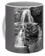 Laurel Falls In The Smoky Mountains Coffee Mug