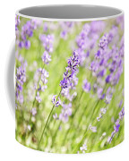Lavender Blooming In A Garden Coffee Mug