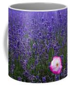 Lavender Field With Poppy Coffee Mug