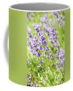 Lavender In Sunshine Coffee Mug by Elena Elisseeva