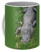 Lazy Gator II Coffee Mug