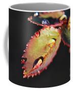 Leaf And Dew Drops Coffee Mug