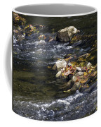 Leaf Collection Coffee Mug