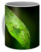 Leafhopper 2 Coffee Mug