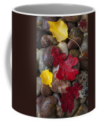 Leafs And Stones Coffee Mug