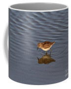 Least Sandpiper Coffee Mug
