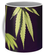 Leaves Of A Marijuana Plant Cannabis Coffee Mug