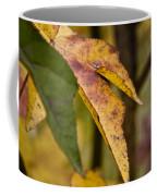 Leaves Of Fall Coffee Mug