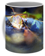 Leaves On Rock In Stream Coffee Mug by Sharon Talson