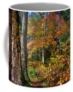 Leaving Cary Lake Coffee Mug