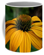 Leilani Coffee Mug