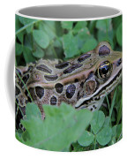 Leopard Frog Coffee Mug