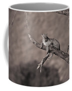 Leopard Panthera Pardus In A Tree Coffee Mug