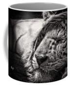 Let Sleeping Tiger Lie Coffee Mug