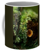 Lichen And Fungi 1 Coffee Mug