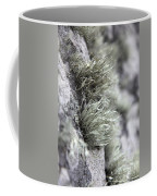 Lichen Niebla Podetiaforma Coffee Mug
