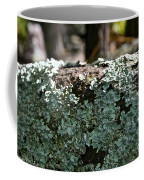 Lichens Lace Coffee Mug