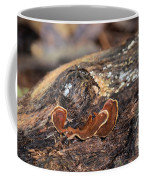 Life On A Log 3 Coffee Mug