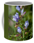 Light Purple Wild Penstemons  Coffee Mug