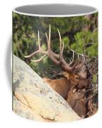 Like Father - Like Son Coffee Mug by Shane Bechler