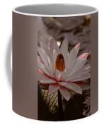 Lil Peachy Coffee Mug