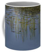 Lilly Pads Float On A River Coffee Mug by Stacy Gold