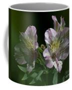 Lily - Liliaceae 3 Coffee Mug
