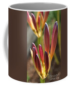 Lily Candles Coffee Mug
