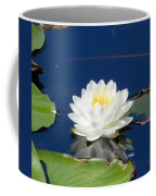 Lily Dreams Coffee Mug