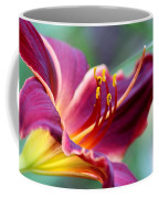 Lily - Hardy Coffee Mug
