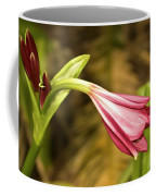 Lily In Pink Coffee Mug