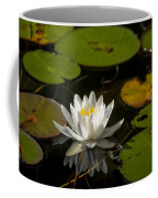 Lily On The Pond Coffee Mug