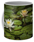 Lily Pads And Blossoms. No186 Coffee Mug