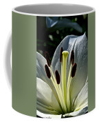 Lily White Coffee Mug