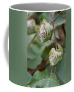 Limestone County Cotton Bolls Coffee Mug