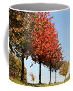 Line Of Autumn Trees Coffee Mug