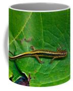 Lined Salamander 2 Coffee Mug
