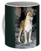 Lioness At Attention Coffee Mug